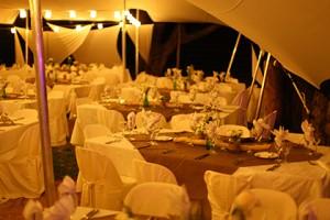 WP-Wedding Planner Paris : un décorateur mariage Paris aux prestations soignées…