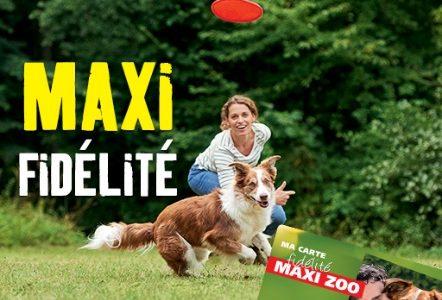 Maxi Zoo : Bien plus que des magasins d'accessoires pour animaux