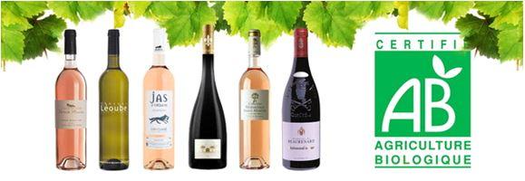 Vin bio, des vins de qualité chez Infinivin