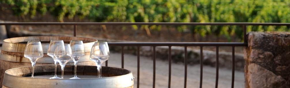 Escarelle : un vin de qualité pour des cocktails frais et fruités
