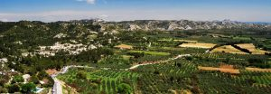 The stunning Alpilles natural park